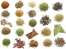 Spices Collection Royalty Free Stock Photos