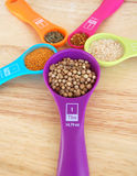 Spices in Colorful Measuring Spoons Stock Photo