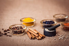 Spices and condiment for cooking. Spices for cooking meat: turmeric, chili pepper, barberry on the wooden table. Copy space on the top Stock Photos