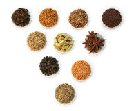 Spices and condiments. Display of group of spices Royalty Free Stock Images