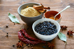 Spices and condiments in bowls Royalty Free Stock Photos