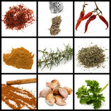 Spices and condiments collage Stock Photography