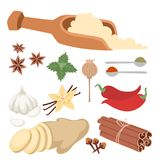 Seasoning food herbs natural healthy spices condiments organic vegetable vector ingredient. Spices condiments and herbs decorative elements and icons. Seeds Royalty Free Stock Images