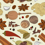 Spices, condiments and herbs decorative elements. Pattern Stock Photos
