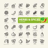 Spices, condiments and herbs - minimal thin line web icon set. Outline icons collection Royalty Free Stock Photos