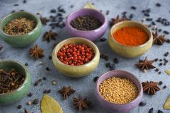 Spices in containers on a gray background Stock Images