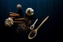 Spices for is cooking. royalty free stock photography