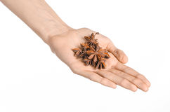Spices and cooking theme: man's hand holding star anise isolated on white background in studio Stock Photo