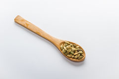 Spices for cooking. Various spices to cook a variety of flavors, cardamom Stock Image