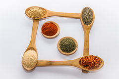 Spices for cooking. Various spices to cook a variety of flavors, ginger, chili, garlic, thyme, fenugreek, red peppers, dill, nutmeg Royalty Free Stock Image