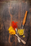 Spices coriander, paprika, curry, mustard seeds. Royalty Free Stock Photos