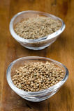 Spices - coriander seeds in a glass bowl, selective focus Stock Photography