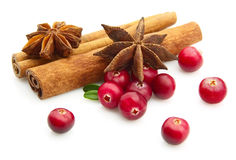 Spices  with cranberry Royalty Free Stock Images