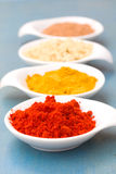 Spices of cucrma, red pepper, ginger and nutmeg Stock Images