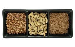 Spices - cumin, coriander and cardomom Stock Photos