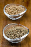 Spices - cumin in a glass bowl, selective focus Stock Photos