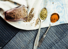 Spices cumin, turmeric, oregano in a spoon Royalty Free Stock Photography