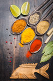 Spices Curry, chili, coriander, bay leaf, pepper Stock Image