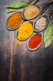 Spices Curry, chili, coriander, bay leaf. Stock Photography