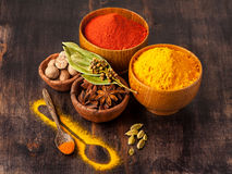 Spices curry, paprika, nutmeg, star anise, cardamom. Stock Images