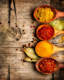 Spices. Curry, saffron, turmeric, cinnamon royalty free stock photos