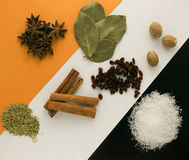 Spices on a dark background Stock Photography