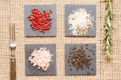 Spices on dark plates with rosemary and antique forks Royalty Free Stock Images