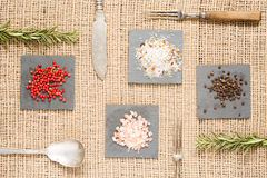 Spices on dark plates with rosemary, antique forks, spoon and kn Royalty Free Stock Image