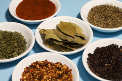 Spices in Dishes Stock Photography