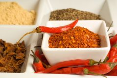 Spices in dishes Royalty Free Stock Photos