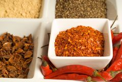 Spices in dishes Stock Image