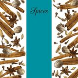 Spices drawing by watercolor Royalty Free Stock Image