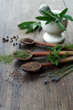 Spices and dried herbs on wooden spoons, fresh herbs with mortar and pestle on wooden background Stock Images