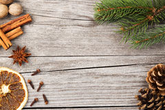 Spices, fir branch and pinecones Stock Images