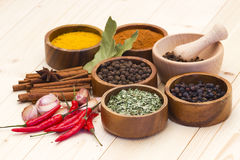 Spices and flavorings Stock Photos
