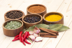 Spices and flavorings  Stock Images