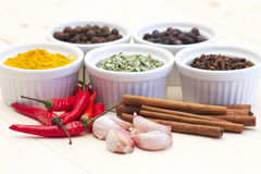 Spices and flavorings  Royalty Free Stock Images