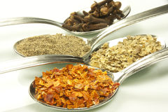 Spices and flavorings. Selection of some spices and herbs Royalty Free Stock Images
