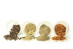 Spices and flavorings. Selection of some spices and herbs Stock Images
