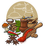 Spices and flavors Stock Images
