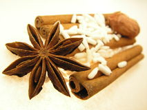 Spices and flavours of Asia. Fructus anisis stellati of Illicium verum ( scientific version ), star anise is the seed pods of the star anise tree. The cinnamon Royalty Free Stock Photo