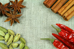 Spices on flax texture. Frame of whole spices on flax background Royalty Free Stock Image