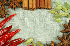 Spices on flax texture. Frame of whole colorful spices on flax background Stock Image