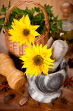 Spices and flower sunflower in a mortar Stock Photo