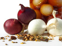 Spices in focus. Red and white onions with pickling spices Stock Photos