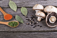 Spices Food Preparation on table Food ingredients. Spices Food Preparation on Wood table Food ingredients royalty free stock photo