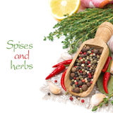 Spices - fresh and dried peppers, garlic, thyme and lemon Stock Photos