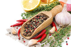 Spices - fresh and dried peppers, garlic, thyme, lemon isolated Stock Images
