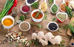 Spices and fresh herbs Stock Images