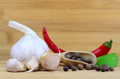 Spices and garlic Royalty Free Stock Photography